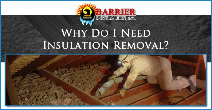 Phoenix Insulation Removal