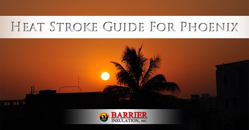 Heat Stroke Guide For Phoenix