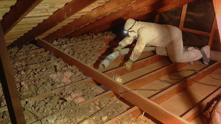 Attic Insulation Removal Costs 2021